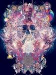 skullnationalWEB_640