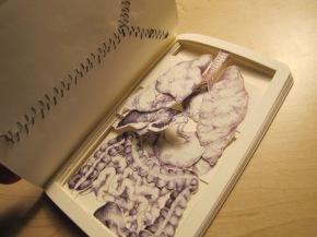 Kathleen_Sawyer_Book_Autopsy_3