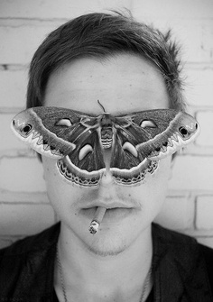 WEAR YOUR INK' ENTOMOLOGY STYLE (Moth tattoo symbolism