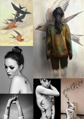 swallows copy