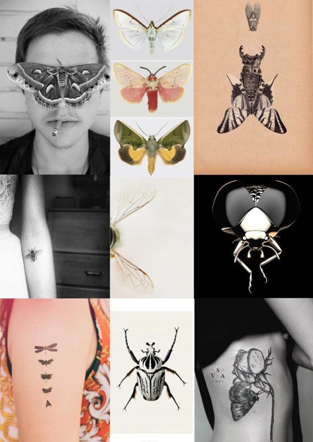 Wear Your Ink Entomology Style Moth Tattoo Symbolism