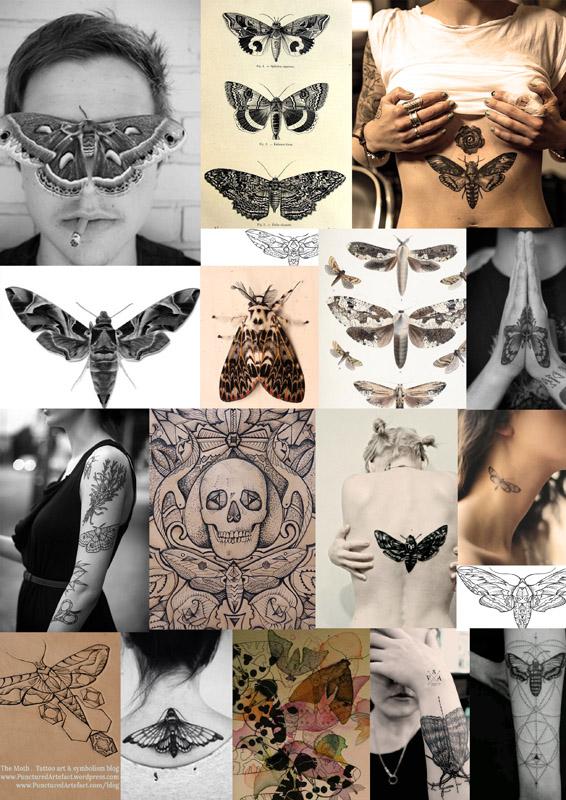 Moth copy